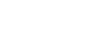 Reveal Business Solutions